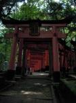 Beginning of the Torii Path