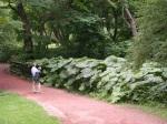 Botanical Gardens - Check those Leaves!