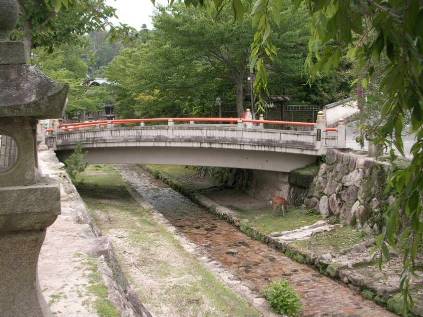 Bridge and Deer