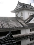 Castle roofs