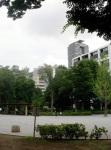 Hamacho - Riverside Park