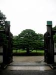 Nijo-jo Castle - Garden Gate