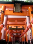One of the Exits from the Torii Walk