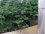 Osaka - Umeda Sky Building Garden
