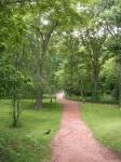 Sapporo Botanical Gardens