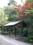 Shrine Wash Basin
