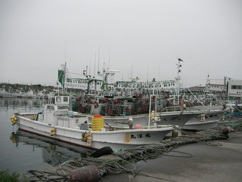 Squid Fleet
