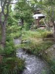 Tea Garden, Tenryu-ji