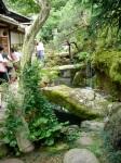 Tea house garden