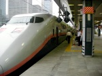 Tokyo Eki - E1 MAX Bi-level Shinkansen