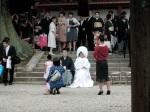 Wedding Party, Kasuga Taisha Shrine, Nara