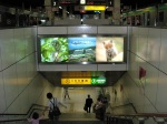 Welcome to Hokkaido, Sapporo Station